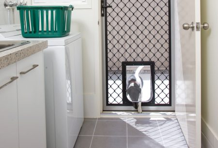 pet door in diamond grille Screen